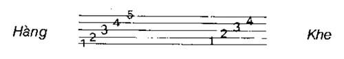 Cách đọc sheet nhạc đơn giản